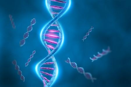Autism and Genes